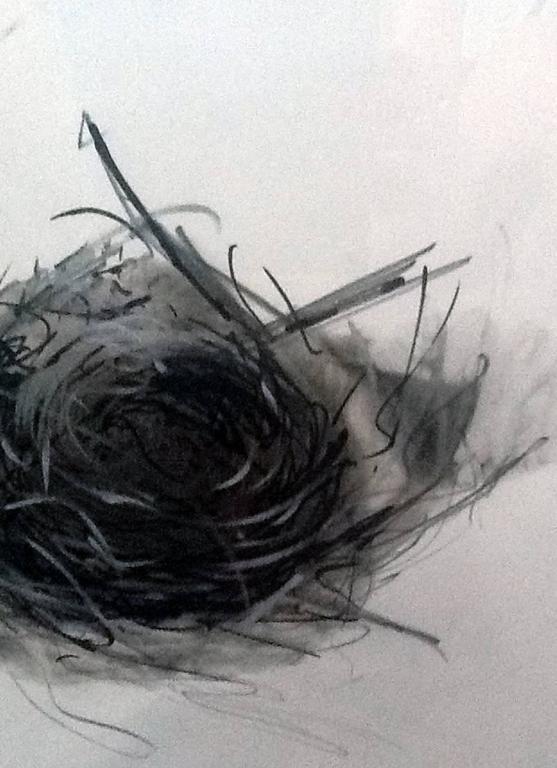 Nest 1 3