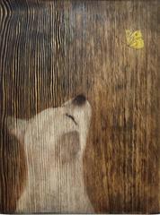 Grain Dog1