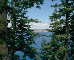 Concealed Vista, color photograph of landscape, forest and water