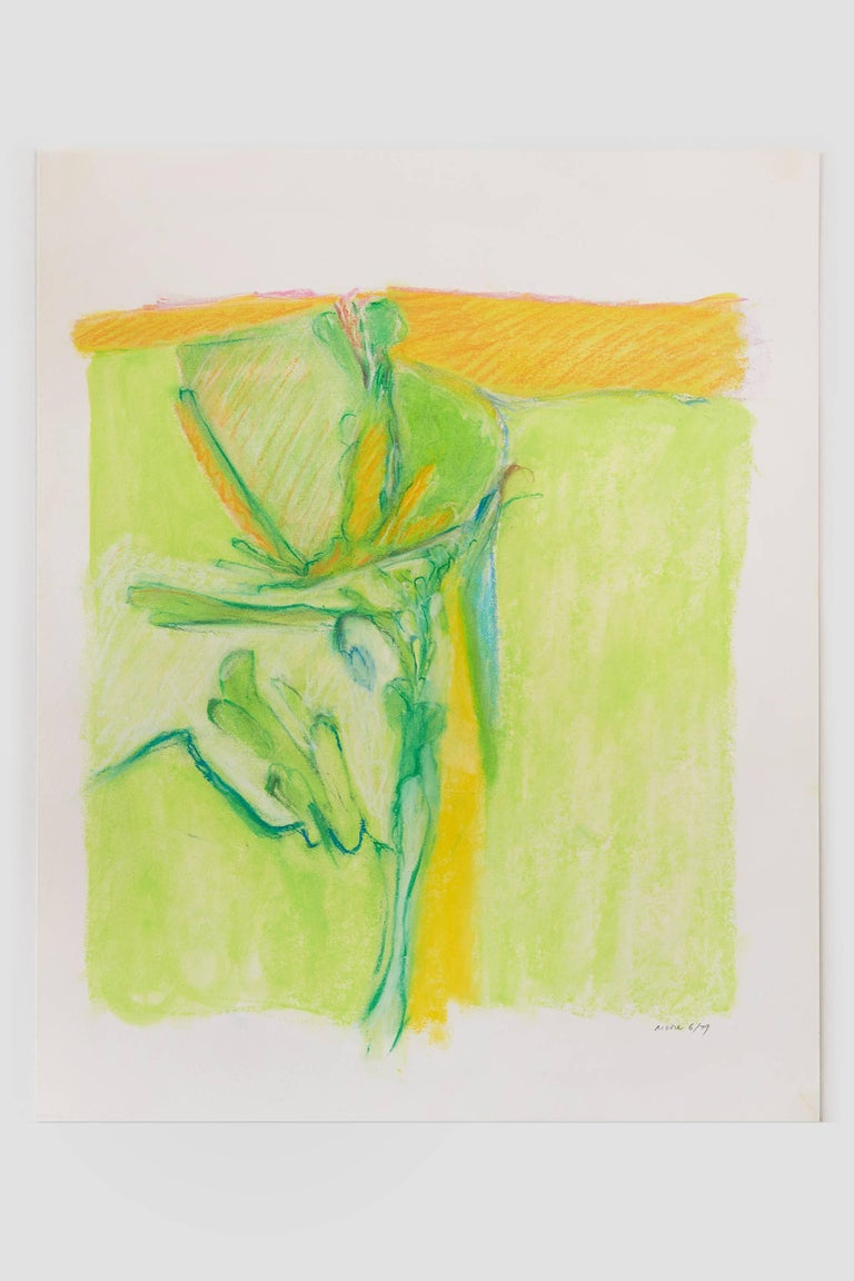 Untitled II (green yellow), pastel on paper, 20 x 16 inches. Bright colors - Art by James Moore