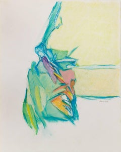 Untitled II (multi), 1979, pastel on paper, 20 x 16 inches. Soft abstraction