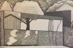 Local Hemisphere, graphite on paper, 5.25 x 8.125 inches. Segmented tree sketch
