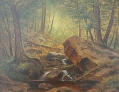 Interior Forest w/ Stream