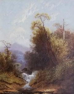 Adirondack Landscape