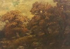 Old Maples on Lake George N.Y.