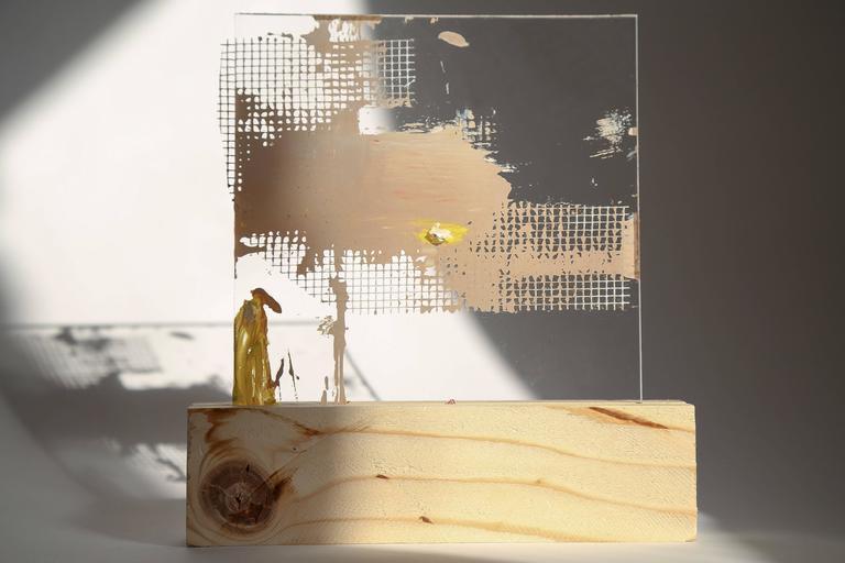Lourdes Rivera, Retrospect 9, 2015, Fabric, Plexiglass, Wood, Oil Paint - Conceptual Painting by Lourdes Rivera