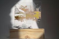 Lourdes Rivera, Retrospect 11, 2015, Fabric, Plexiglass, Wood, Oil Paint