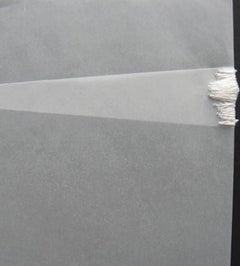 Liz Sweibel, Untitled (Tear 10), 2010, Thread, Vellum