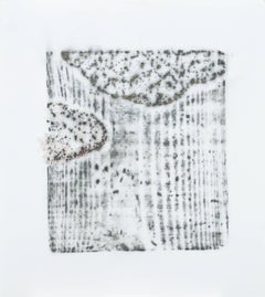 Alyse Rosner, Afterimage 11, 2006, Acrylic Paint, Graphite