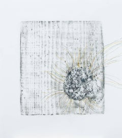 Alyse Rosner, Afterimage 12, 2006, Acrylic Paint, Graphite
