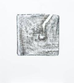 Alyse Rosner, Endgrain 3, Umber, 2006, Acrylic Paint, Graphite
