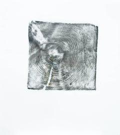 Alyse Rosner, Endgrain 8, Acrylic Paint, Graphite