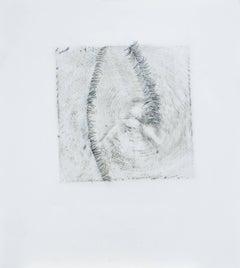 Alyse Rosner, Endgrain 9, Fade, 2006, Acrylic Paint, Graphite