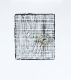 Alyse Rosner, Knots 16 (ochre), 2006, Acrylic Paint, Graphite