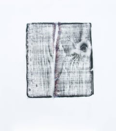Alyse Rosner, Split 7 (violet), 2006, Acrylic Paint, Graphite