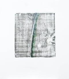 Alyse Rosner, Split (loden), 2006, Acrylic Paint, Graphite