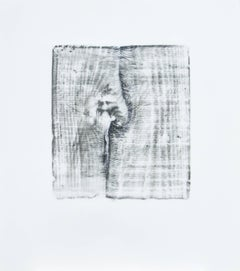 Alyse Rosner, Split 11, 2006, Acrylic Paint, Graphite