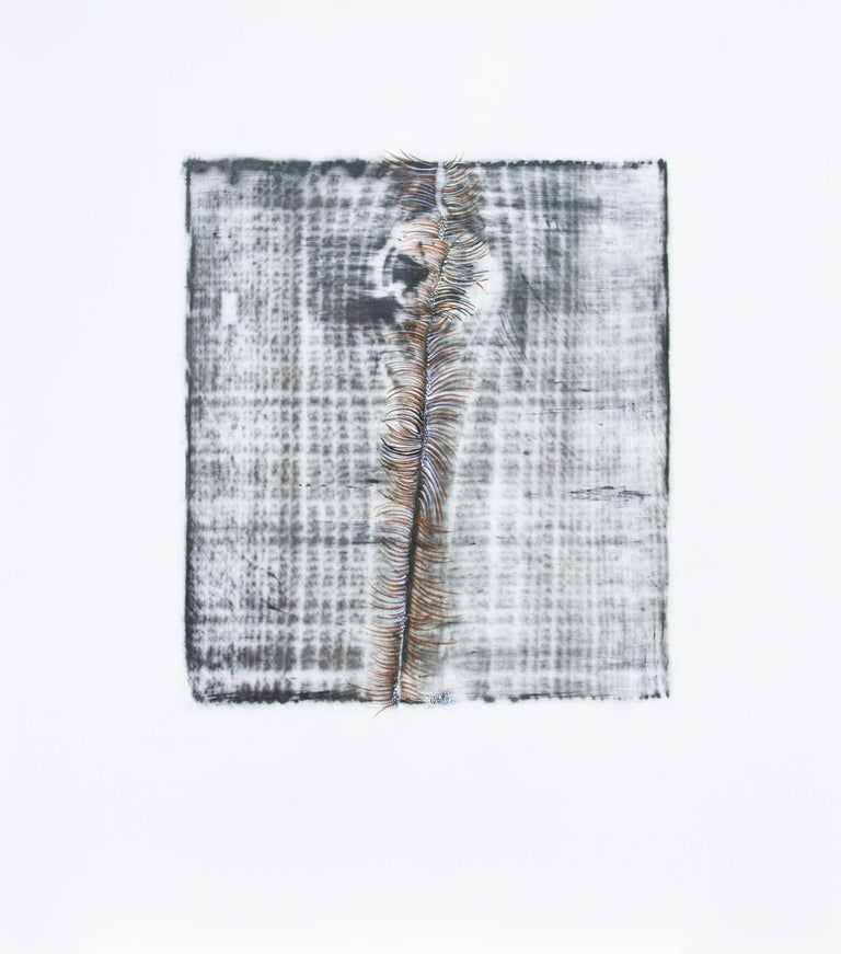 Alyse Rosner, Split 12 (metallic), 2006, Acrylic Paint, Graphite