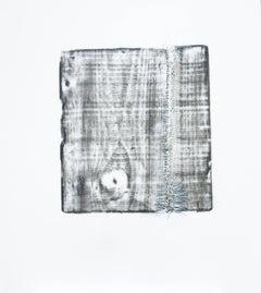 Alyse Rosner, Split 14, 2006, Acrylic Paint, Graphite
