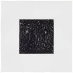 Patrick Carrara, A.132, 2013, Mylar, Ink