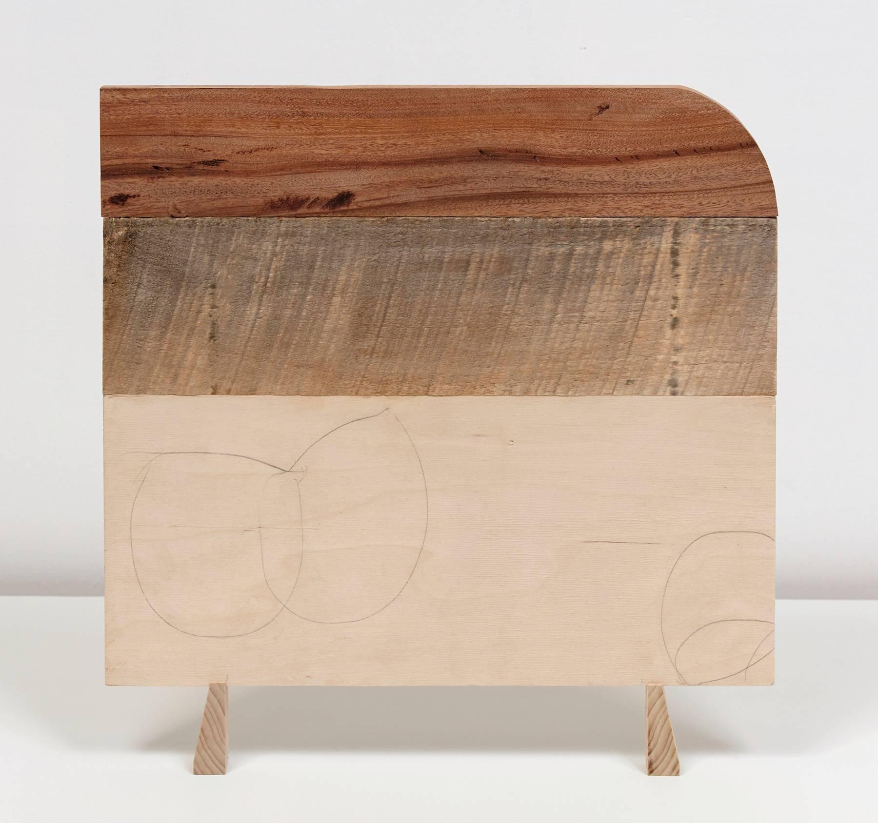 Emily Feinstein, Wood Drawing, 2016, Wood, Mahogany, Plywood