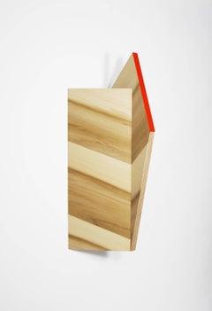 Richard Bottwin, Mike's Arm, 2018, poplar, plywood, acrylic paint