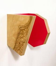 Richard Bottwin, Parallel #6, 2006, Wood Veneers and Acrylic