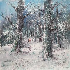 a winter scene in the forest