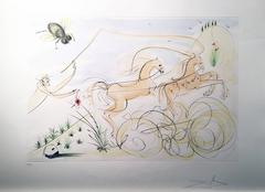 The coach and the fly, a surrealist etching by Dali