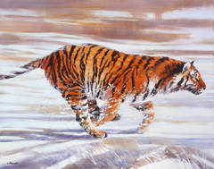 The tiger during the winter in the Taiga