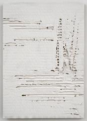 Untitled Cardboard V