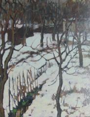 Snowy Undergrowth  Sous Bois Enneigé