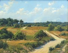 Sanford Farm Pathway