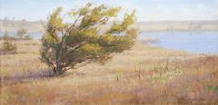 Windbent Pine, Psalms 16:8
