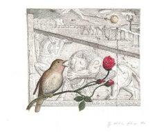 Common Nightingale, Iran