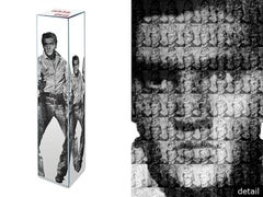 Love You Tender, Kill Me Softly, Elvis vs. Warhol