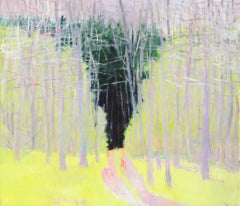 Path Through Undergrowth