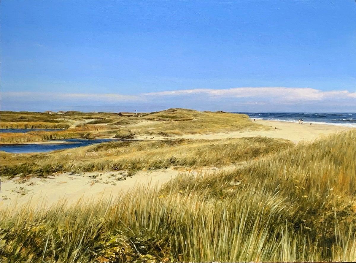 Miacomet Dunes