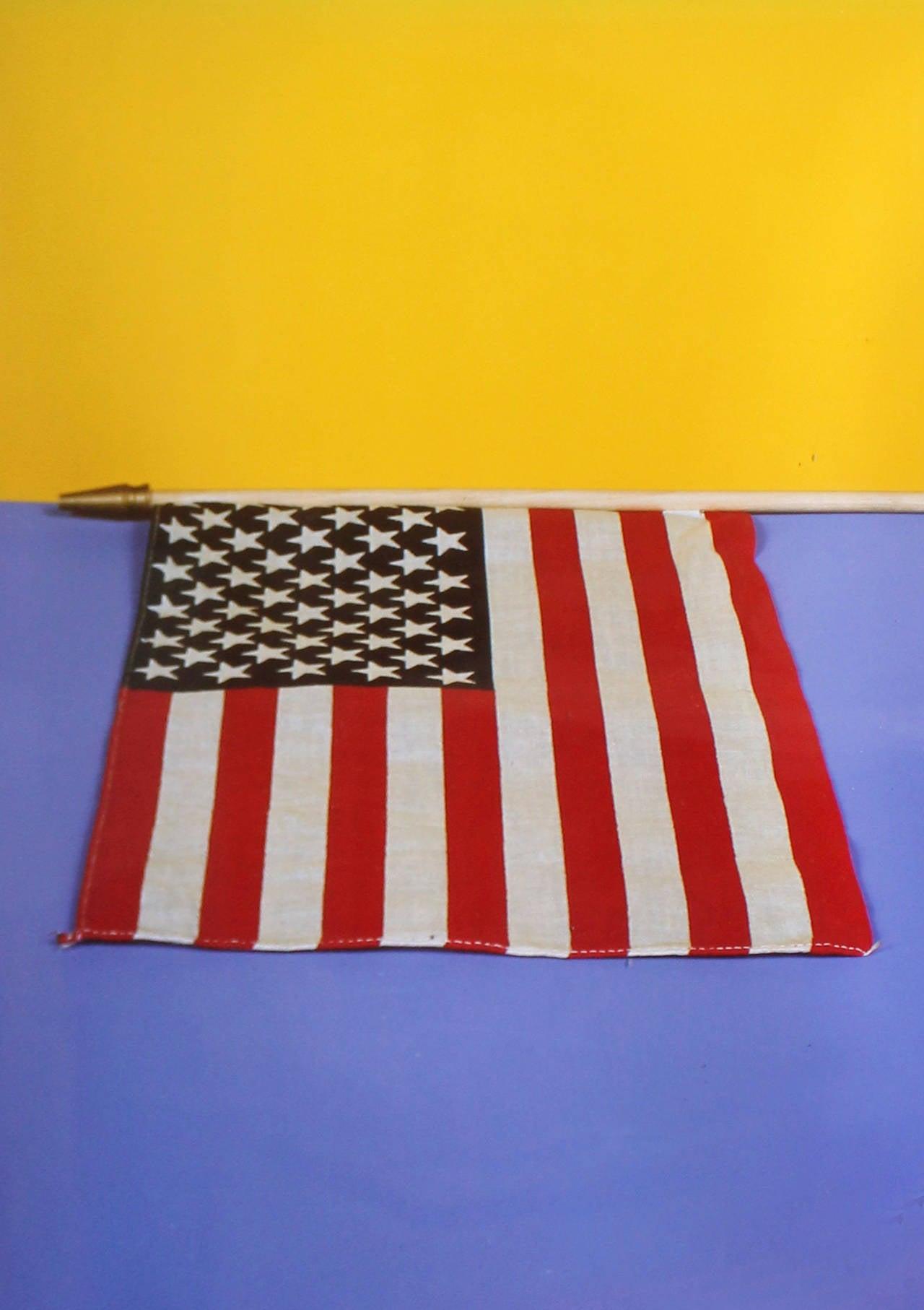 Flag (Ann Magnuson)