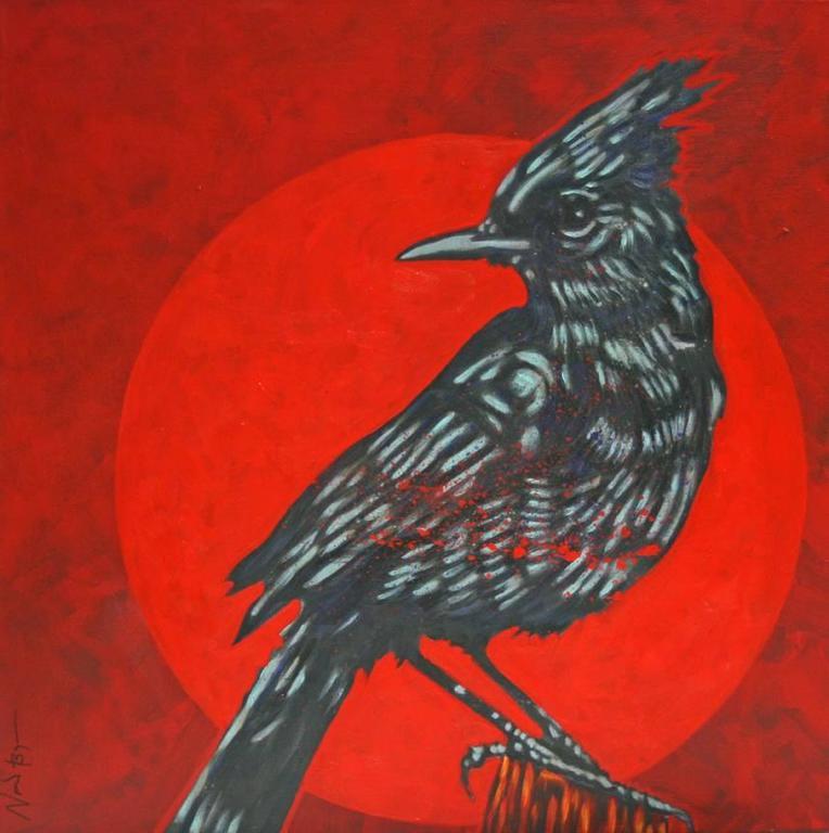 """Little Bird- Stellar Jay- Symbol"""
