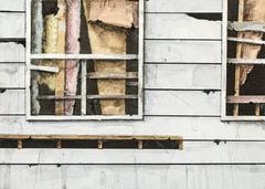 Window Study VI