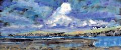 Ynys Aberteifi Island