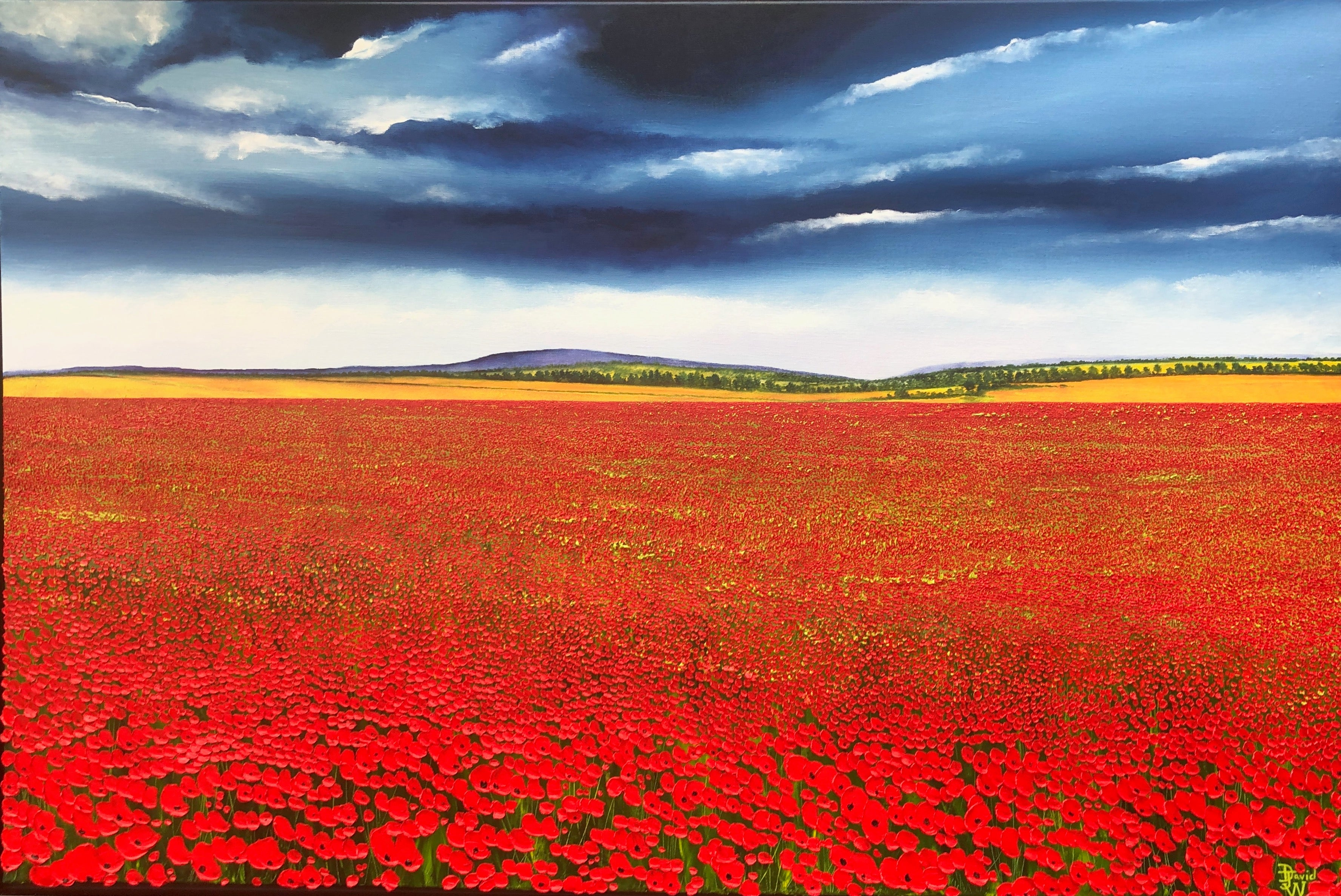 A Sea Of Poppies.   Large Contemporary Landscape Painting