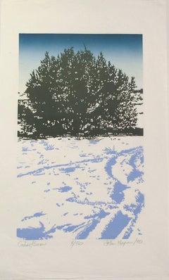 Cedar Snow, woodblock print, Santa Fe desert scene