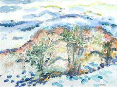 Judith Sobel - Landscape