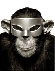 Monkey Series - Monkey with Mask