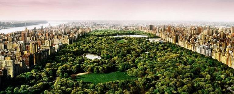 David Drebin Color Photograph - Dreams of Central Park