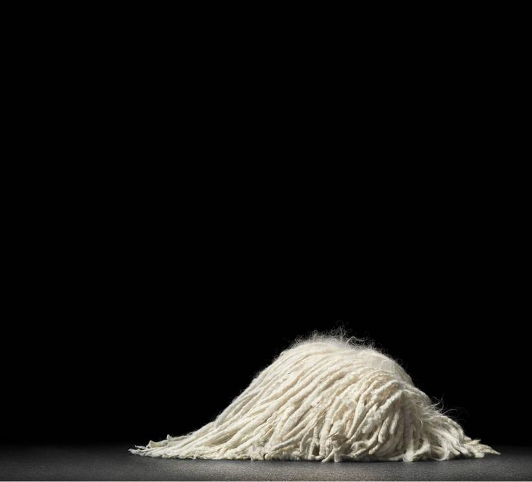 Tim Flach Color Photograph - Sleeping Mop
