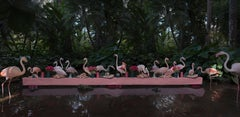 The Pink Flamingo Feast