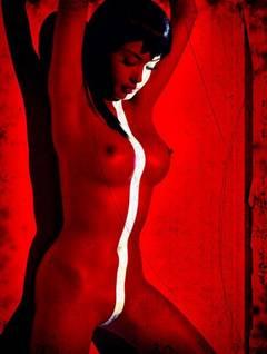 Erotic Nude 3566